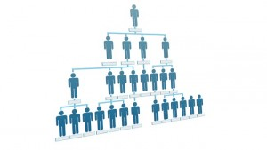 Organization corporate hierarchy chart company people